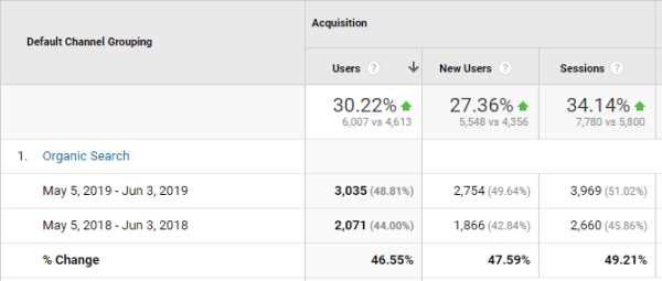 Knoxville SEO Google Analytics Data