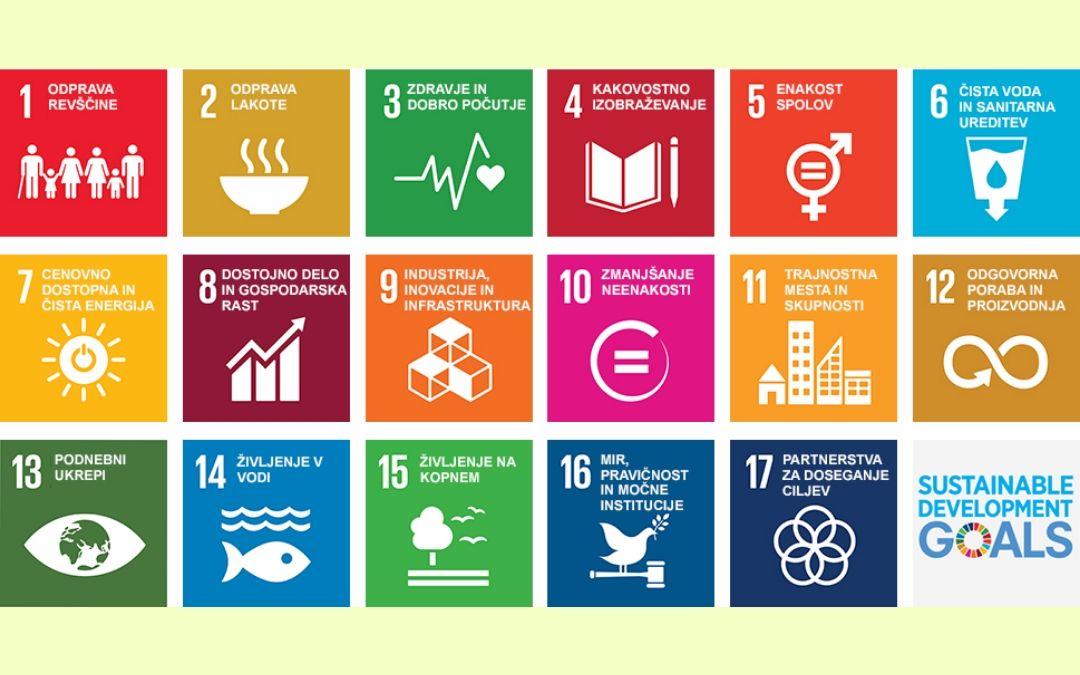 Udeležite se spletnega tečaja o doseganju ciljev trajnostnega razvoja