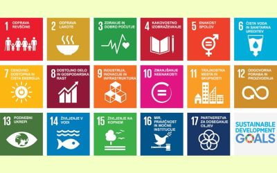 Izobraževanje je ključno pri doseganju ciljev trajnostnega razvoja!