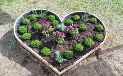 Therapeutic gardening for people with intellectual disabilities