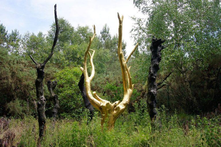 foret-broceliande-arbre-or-bucket-list