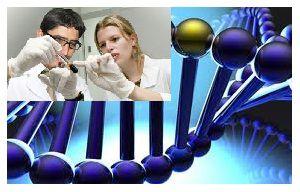 mapa genetico-cancer-nuevos-genes.
