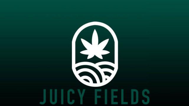 juicy fields españa