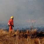 Advierten de elevado riesgo de incendios hasta el sábado