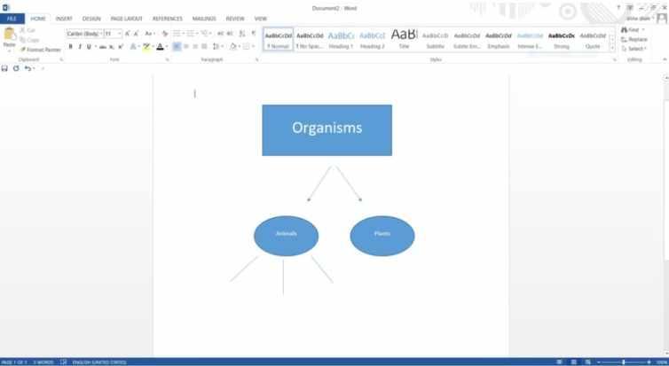 word con diagrama