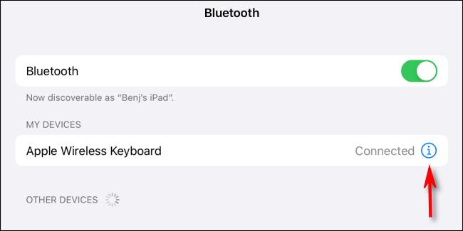 Toque el ícono de información en Mis dispositivos en Bluetooth en Configuración para iPad