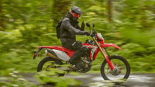 Report: Record Number of Households Own a Motorcycle