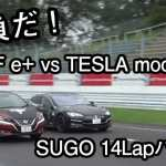 Nissan Leaf vs Tesla Model S