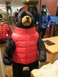 クマに襲われたときはモンベルのジャケットを