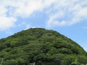 経ケ岬灯台の森