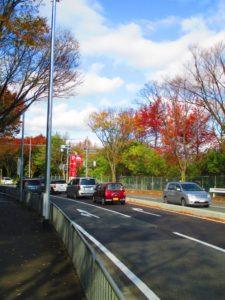 エキスポシティ駐車場の行き方