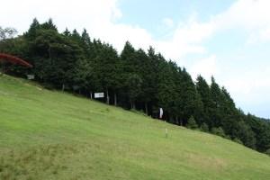 池田山の斜面