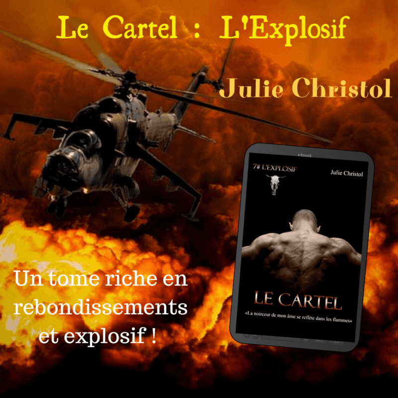 Le Cartel de Julie Christol