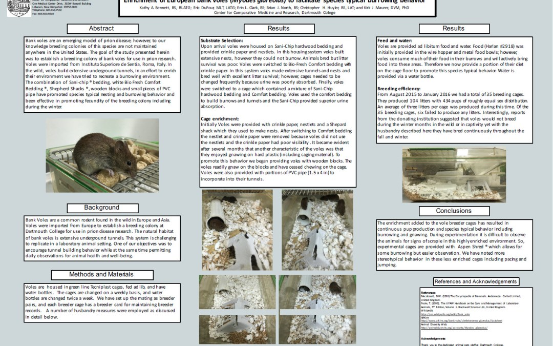 Enrichment of European bank voles (Myodes glareolus) to facilitate species typical burrowing behavior