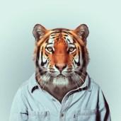 Zoo Portrait by Yago Partal #4