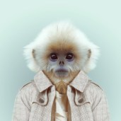 Zoo Portrait by Yago Partal #7