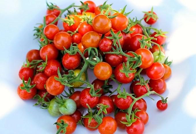 Tomatemanía, tomates perlita