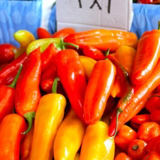 Homestead Farmers Market {un recorrido por el mercado libre}