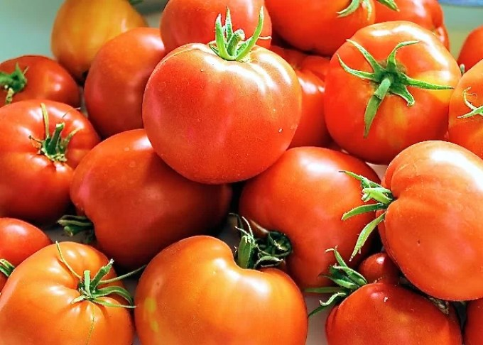 Tomates - Lasaña de berenjena - SAVOIR FAIRE by enrilemoine