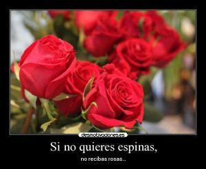 rosas y espinas