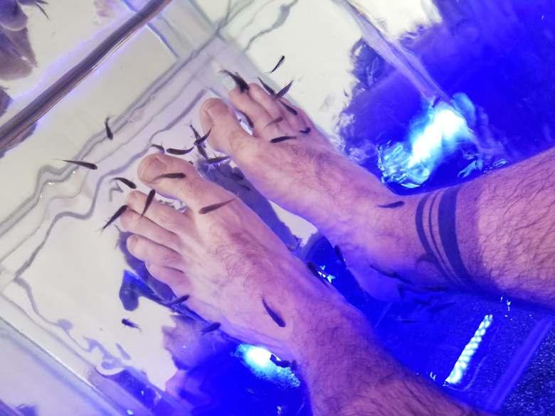 fish massage avis