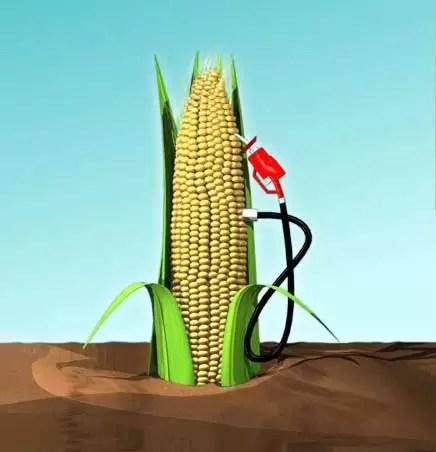 Buenas noticias: Empresarios  Brasil interesados en producir etanol en RD