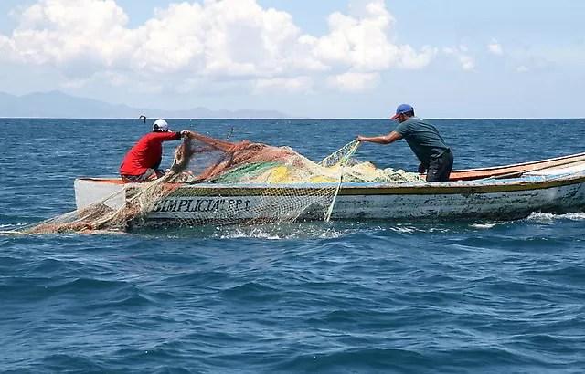 Expertos alertan sobre efectos para los océanos de la pesca ilegal