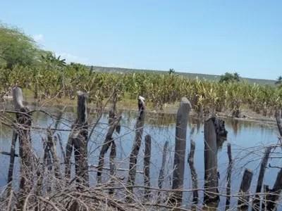 Familias sienten los efectos de las crecidas del lago Enriquillo