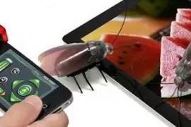 El regalo de moda en Japón: cucarachas robot