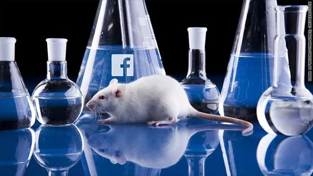 facebook lab ratas