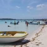 La bacteria hallada en la playa de Boca Chica