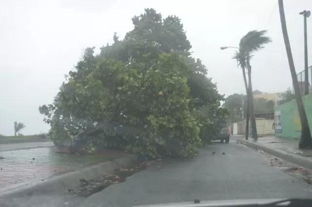 Efectos de la tormenta Erika en República Dominicana
