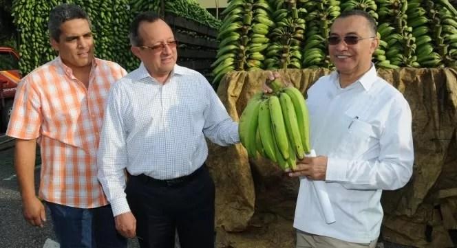 El Ministerio de Agricultura venderá los plátanos a RD$6 y RD$8