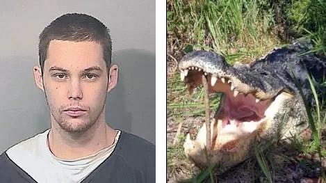Intenta robar vivienda y termina, literalmente, en la boca de un caimán…