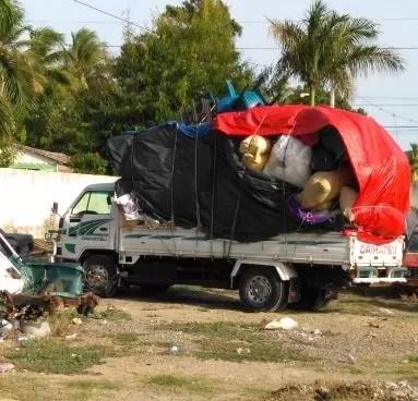 PN recupera 36 gallos de pelea en camión que iba hacia Haití