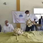 Auxilian a productores de ajo de Constanza