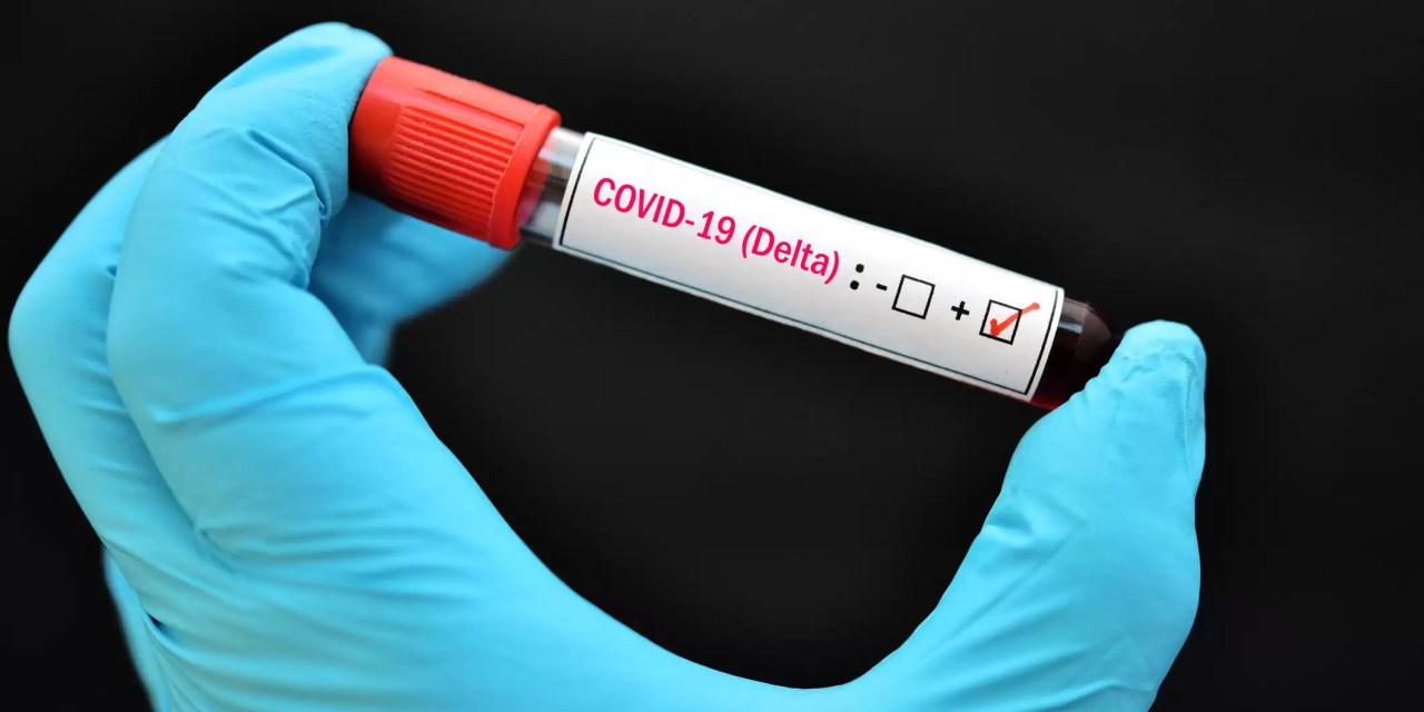 Director de Cedimat no cree variante Delta sea resistente a las vacunas contra Covid-19