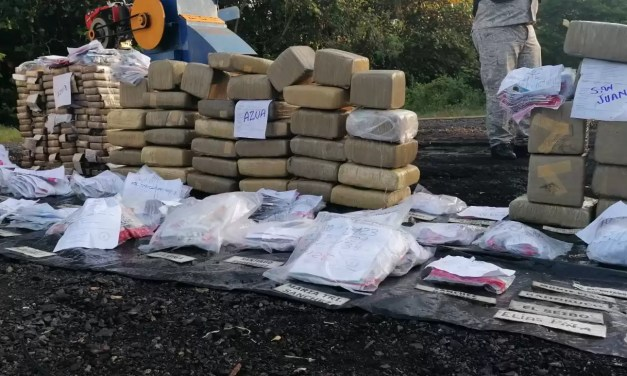 PGR quema otros 233 kilogramos de drogas