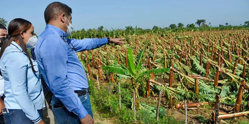 Agricultura evalúa daños causados por tornado en Mao