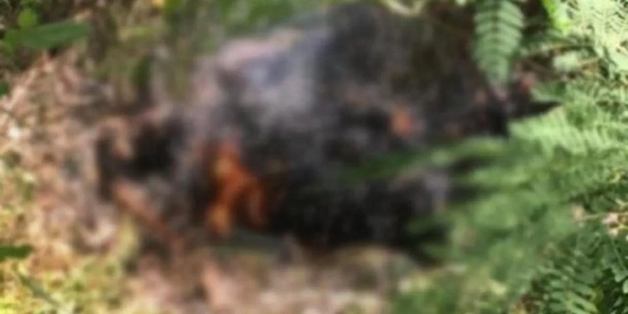 Hallan cadáver quemado de un médico