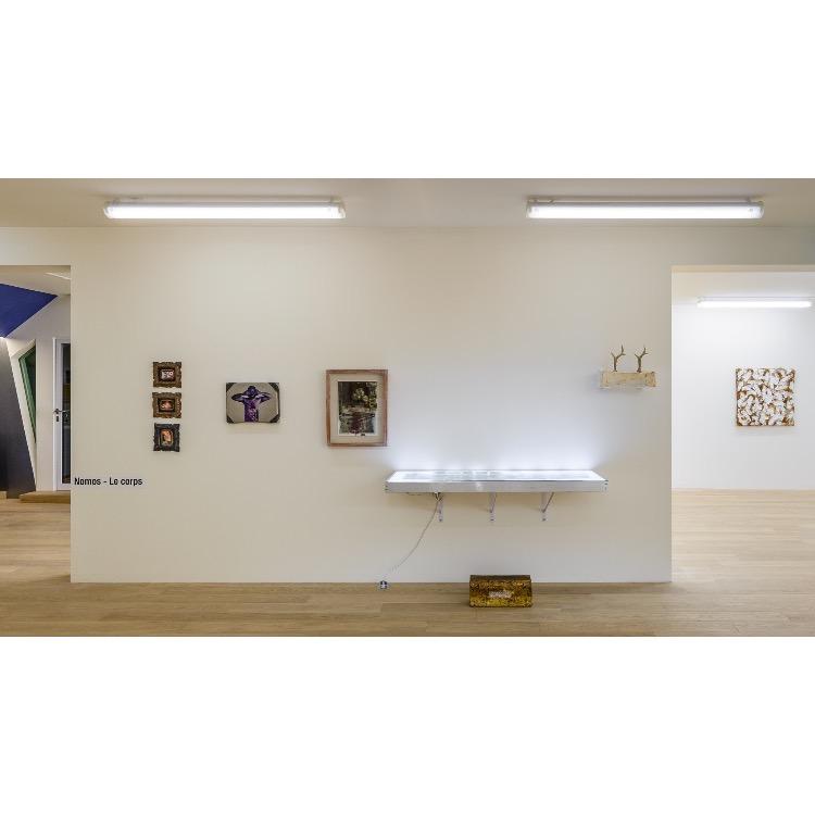"""Vue de l'exposition """"Nomos - Christian Paraschiv"""" avec de gauche à droite : «Historyline», 2002, «Historyline», 2005, «Historyline», 2005, «Qu'est-ce qu'on appelle radium», 1983-2000, «Quand on est roumain, on est français», 1999-2002, «La Peau/Le Corps, Bio-Art», 2007, «La Blessure», 2018. Photographie : © Grégory Copitet - Enseigne des Oudin"""