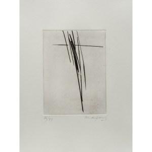 André Marfaing, gravure  numérotée et signée par l'artiste. Tirage à 120 exemplaires numérotés sur papier vélin d'Arches. [Paris : Espace Latino-Américain, 1985]. Photographie : Véronique Huyghe