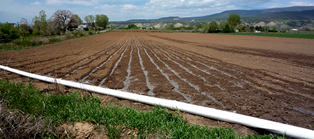 "Flooding furrows is a time-tested but relatively inefficient method of watering crops around the world. Photo by Jessica ""The Hun"" Reeder (Flickr/Creative Commons)"