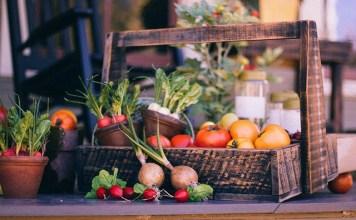 Manfaat Makanan Organik