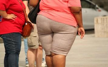 Penyebab Kegemukan dan obesitas