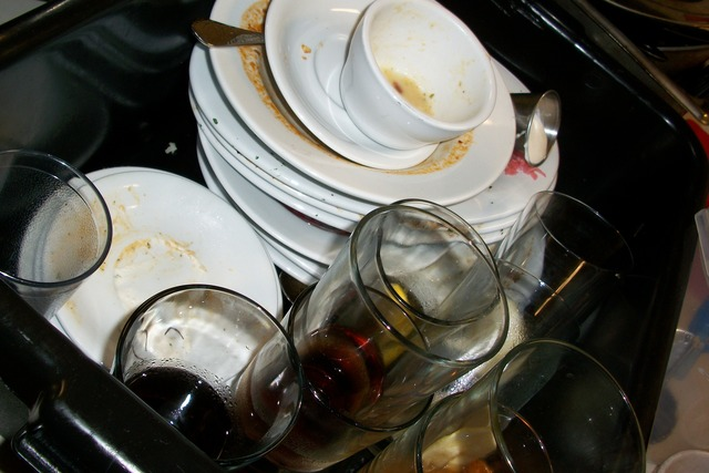 Aktivitas Mencuci Piring Sedari Kecil Memiliki Dampak Positif Bagi Kekebalan Anak