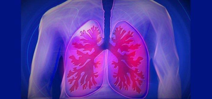 Inilah Waktu Kerja Organ Tubuh sesuai Ilmu Pengobatan Cina