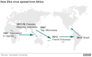 Bagaimana Virus Zika Menyebar dari Afrika