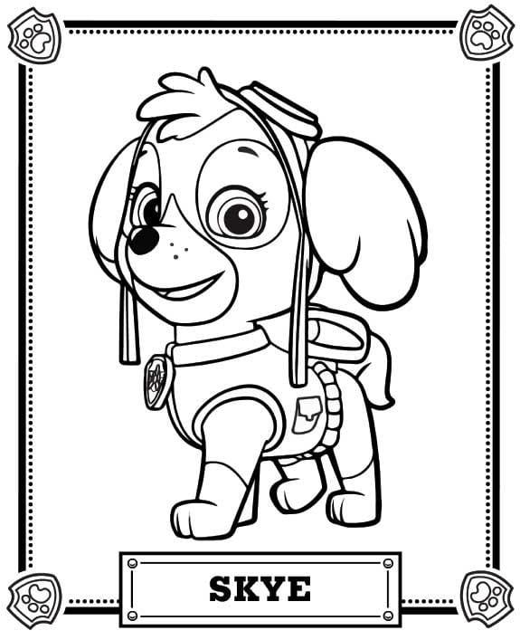 desenho colorir patrulha canina skye