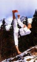 Taekwondotech1